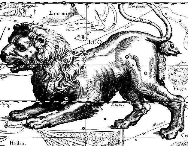 все о людях со знаком зодиака лев